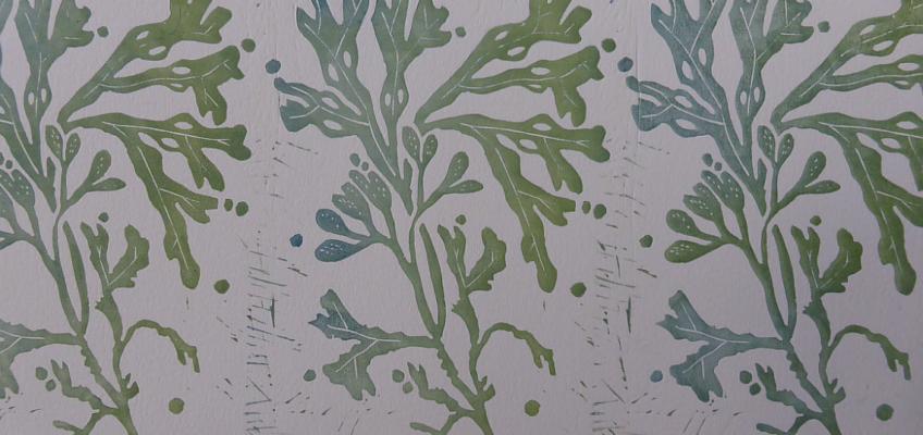 3 seaweed