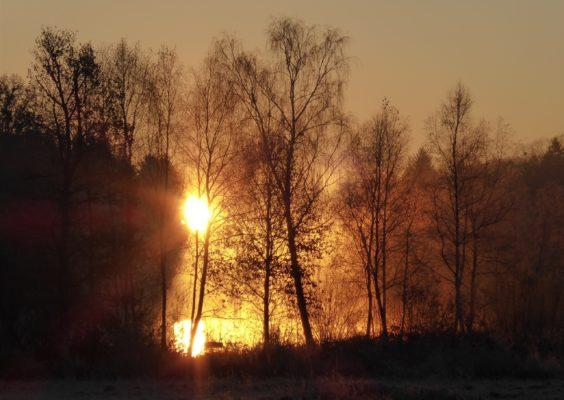sunrise dec