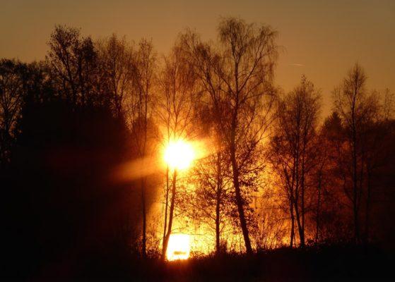 sunrise too