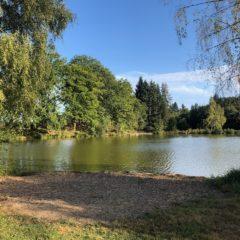 Sunny Birch Water